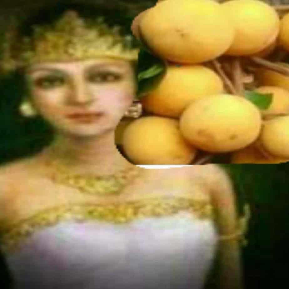 Asal Usul Desa Kecapi Ratu Shima Ngidam Buah Kecapi