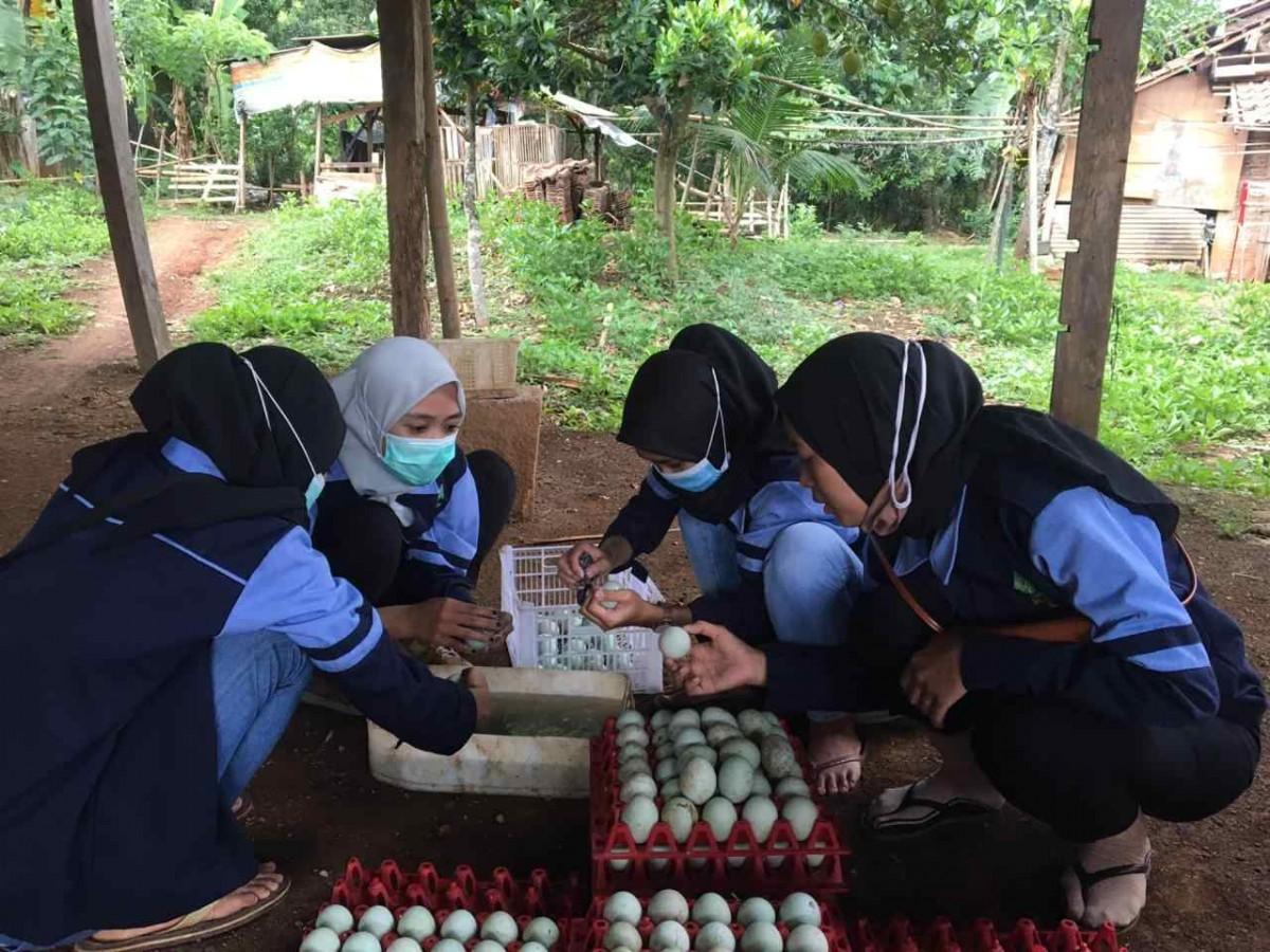 KKN UIN Walisongo Semarang Belajar Berwirausaha Telur Asin Saat Pandemi